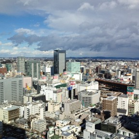 View over Sendai from Westin Hotel